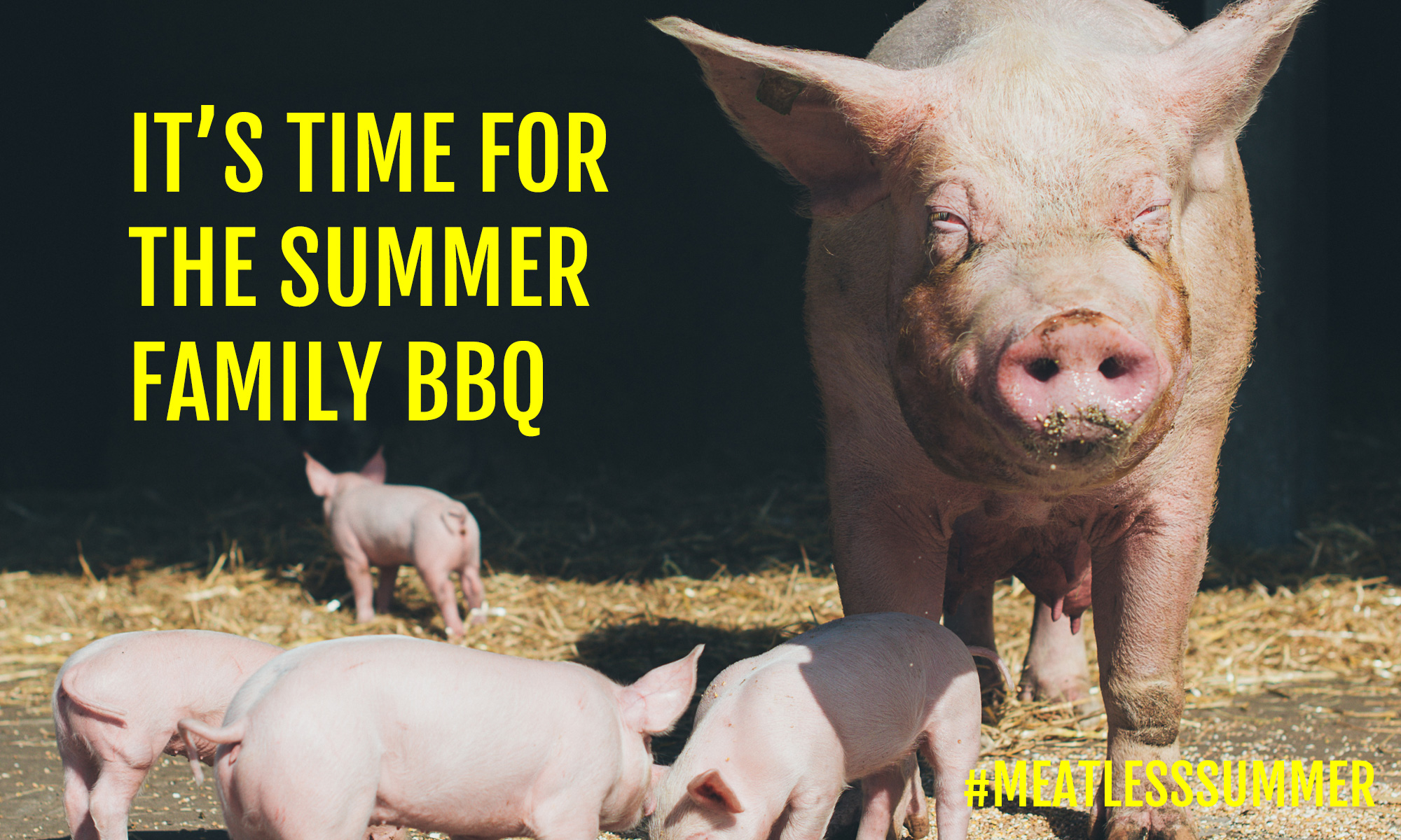 My Mom Sam - Family Summer Family BBQ